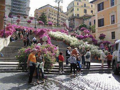 Rozkvetlé španělské schody - Duben 2008 (nahrál: miljak)
