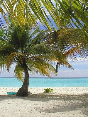 Maledivy 2003