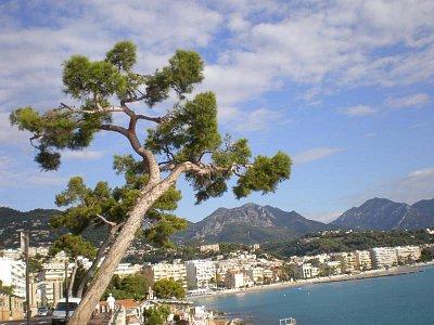 pohled na Menton - Vydali jsme se pěšky do Monaka stezkou kolem Cap Martin... (nahrál: Marie9)