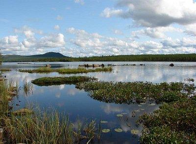 Jezero Kyrksjön - Ideální místo pro kemping. Houby, borůvky a brusinky všude vůkol, ve vodách jezera metrové štiky..... (nahrál: Pavel)