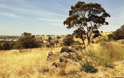 Mengler Hill - Zde byl založen i tzv. Sculpture Park (nahrál: Luboš)
