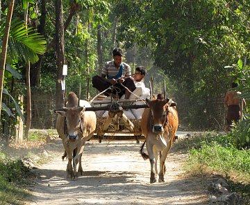 NGAPALI VILLAGE - MYANMAR 2012